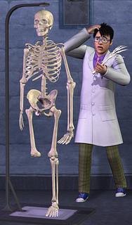 Los Sims 3 – Movida en la Facultad: ya es oficial  Otrouni